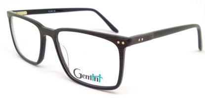 Gemini - 111008004304