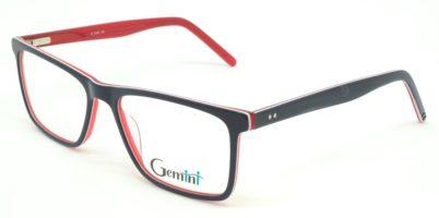 Gemini - 111008004605
