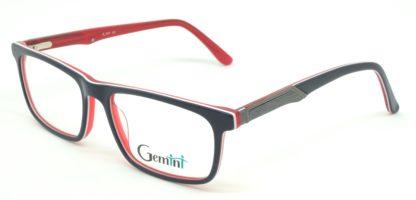 Gemini - 111008000704