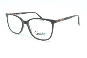 Gemini - 111008005604