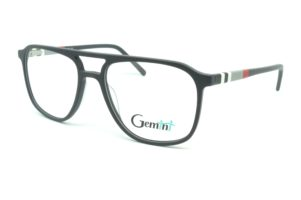Gemini - 111008005705