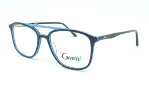 Gemini - 111008005905